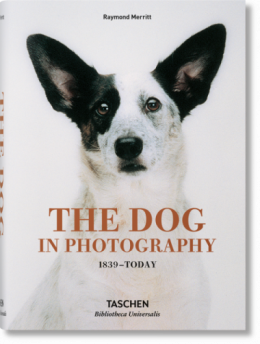 The Dog in Photography 1839–Today